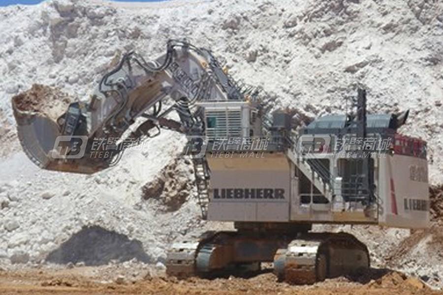 利勃海尔R 9800矿用beplay官方在线客服